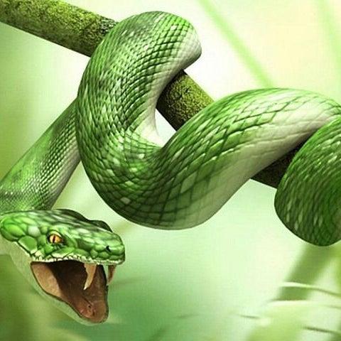 К чему снится голова змеи женщине
