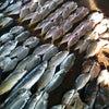 Foto Pasar Ikan Gudang Lelang, Bandar Lampung