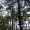 Foto Bandung Treetop Adventure Park, Bandung Barat