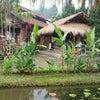 Foto Waroeng Desa, Mojokerto