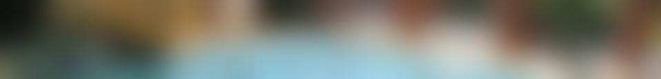 Large background photo of Nautiland