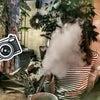 Фото Jumanji