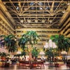 Orlando International Airport, Photo added:  Tuesday, November 19, 2013 4:06 AM