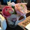 Фото Розовый сад