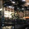 Embassy Suites Phoenix - Biltmore