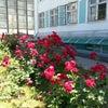Фото Общежитие, ДГТУ