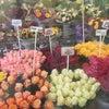 Фото Цветочный рай