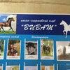 Фото Виват, конный клуб
