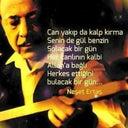 aysegul-121575070