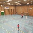 dennis-van-der-stelt-1246035