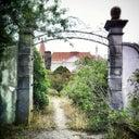 photojunkienl-4739454