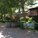 bonny-van-der-burg-7806788