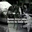 busra-zuhal-56460414