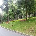 sumeyye-ipekci-60236958