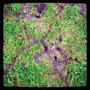 bernard-rusted-75602047