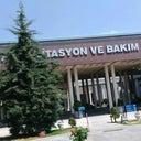 buket-aydogmus-91811020