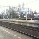 micha-hoiting-463733