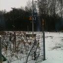 marcus-schulz-953468