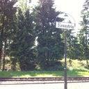 daniel-schultheiss-8349882