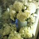 maryjanes-flowers-30904672