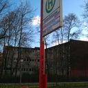 alexander-nenstedt-3386775