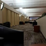 """Concourse E is best for napping/sleeping. Ride the elevator across from """"Meadows"""" up to the third floor, and enter the 'quiet' traveler area. Don't bother with the airline clubs as they are small."""