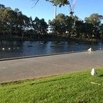 Photo taken at Elder Park by Ameera on 11/21/2012