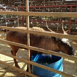Photo taken at Stockyards Arena & Stables by Melissa C. on 10/26/2012