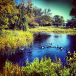Photo taken at Humboldt Lagoon by Tracy M. on 10/4/2012
