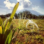 Photo taken at Serian Regional Water Supply Project Site by Imran A. on 7/24/2013