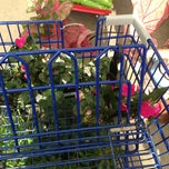 Photo taken at Lowe's Home Improvement by Michelle M. on 5/19/2013