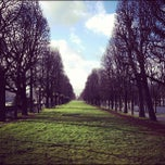 Photo taken at Jardins des Champs-Élysées by Diane F. on 12/25/2012