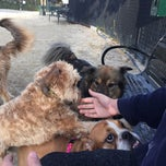 Photo taken at 63rd St Dog Park by Samantha T. on 11/9/2014