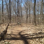 Photo taken at Alapocas Woods Park (Hiking Area) by Abby P. on 4/6/2013
