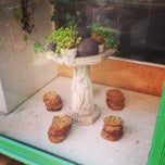 Photo taken at Vesuvio Bakery by Zhen Z. on 6/30/2014