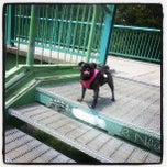 Photo taken at Discovery Walk DVP Footbridge by Shane Edward Richard S. on 7/2/2013