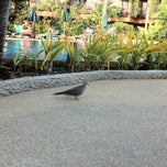 Photo taken at Patong Merlin Hotel Phuket by Moy L. on 2/6/2013