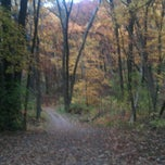 Photo taken at Lapham Peak Unit, Kettle Moraine State Forest by Katie K. on 10/17/2012