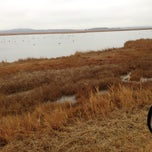 Photo taken at Sandy Point Plum Island Reservation by George M. on 12/8/2012