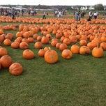 Photo taken at F&W Schmitts Farm by Joe R. on 10/20/2012