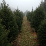 Photo taken at Oak Ridge Tree Farm by Mike G. on 12/2/2012