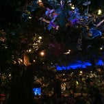 Photo taken at Rainforest Cafe by Alesha T. on 10/14/2012