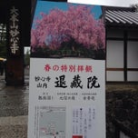 Photo taken at 妙心寺 南門 by heresy666 on 4/3/2015