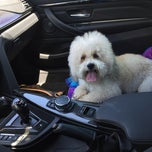 Photo taken at Partners Dog Training School by Melany B. on 4/23/2015