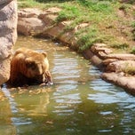 Photo taken at The Oklahoma City Zoo by Andrew Y. on 10/21/2012