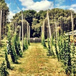 Photo taken at Anderson Valley Brewing Company by Brian C. on 5/26/2013