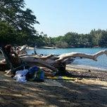 Photo taken at Waialea Bay by Betty L. on 2/28/2014