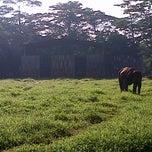 Photo taken at Kebun Binatang Ragunan by Diani A. on 12/16/2012