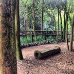 Photo taken at Parque Alfredo Volpi by Elcias M. on 4/12/2013