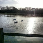 Photo taken at Adgestone Camping and Caravanning Club Site by E1 on 1/2/2014